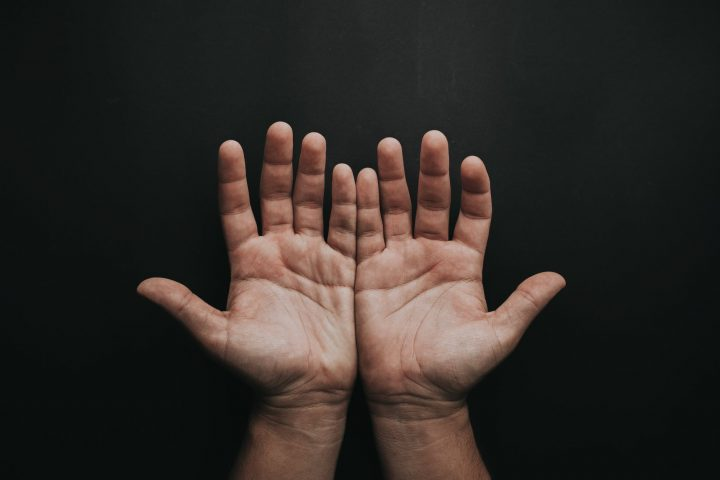 photo of person s open hands